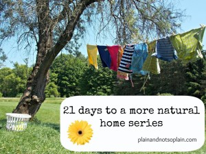 all natural home series1 300x225 21 days to a more natural home series part 10...laundry soap