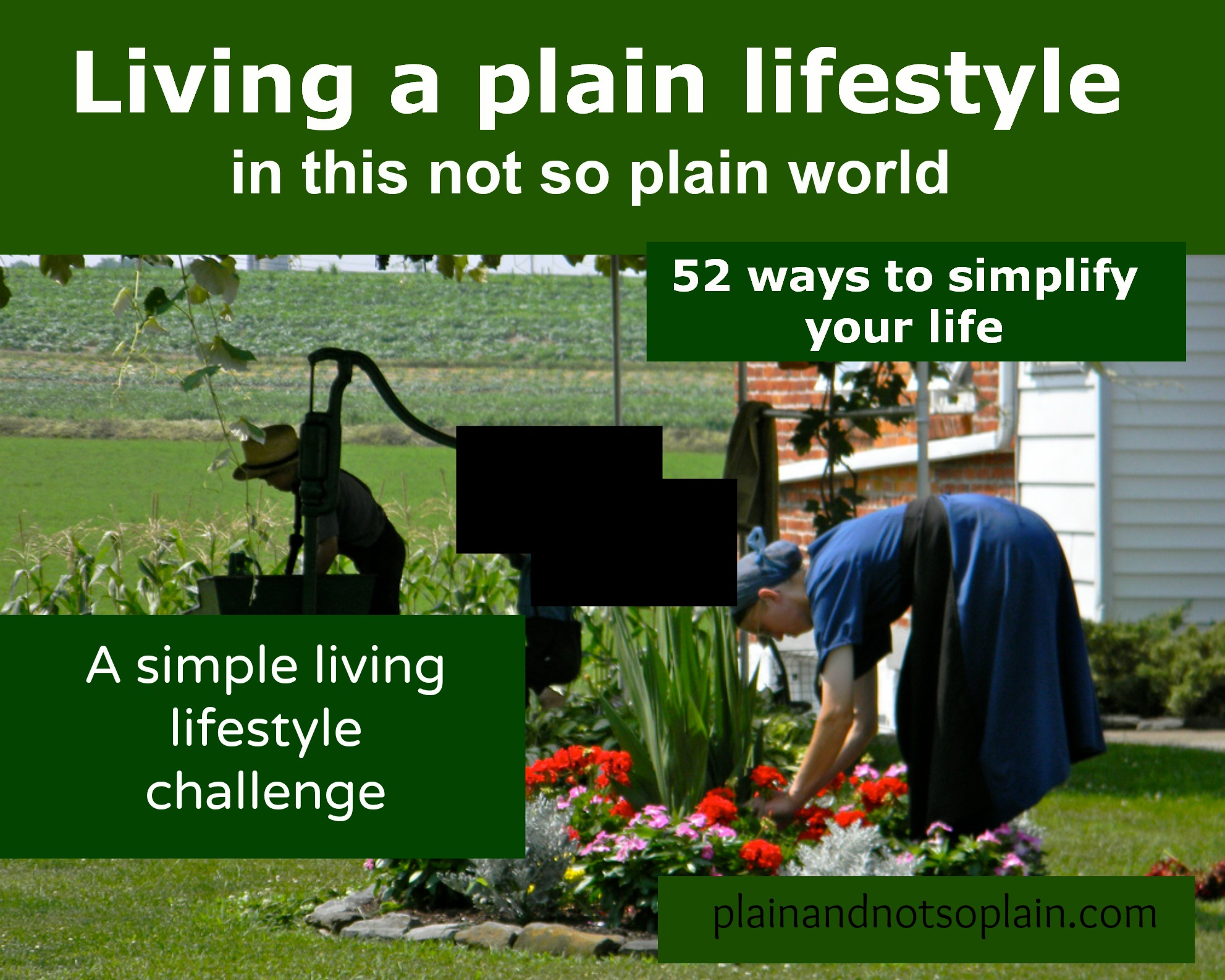 simple living lifestyle challenge plain and not so plain